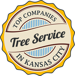 kansas city tree service